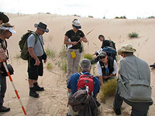 Photo of Athabasca Sand Dunes Provincial Park Fieldwork