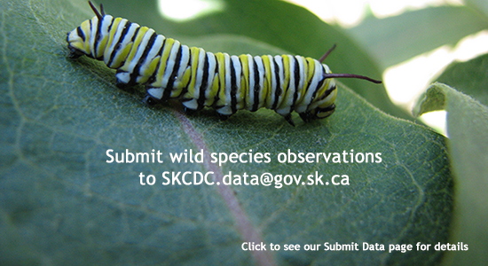 Submit data to SKCDC.data@gov.sk.ca